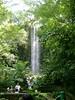 (Artificial) Waterfall in Jurong Bird Park