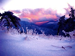 Snow Sunset photo by ms4jah
