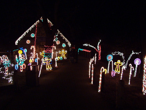 Zoo_Lights 04