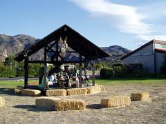 Malibu's annual nativity scene
