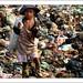 Supervivència a Camboia