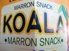 Koala-Marron