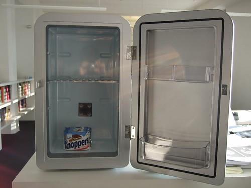 Minikühlschrank 009