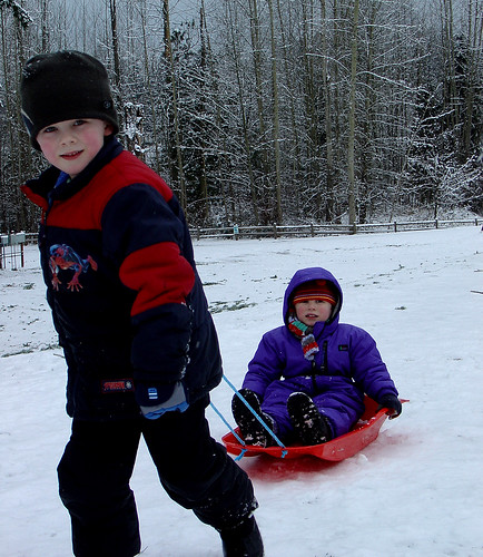 Sleding (sledging) in Cottage Lake Park