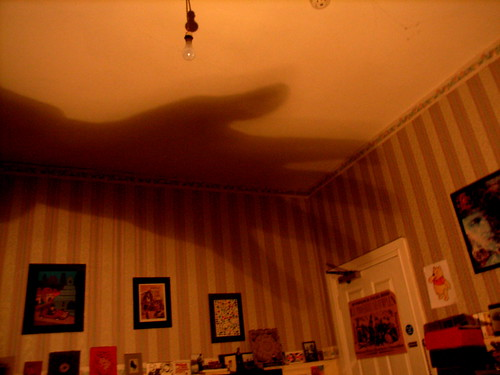 Giant Hand Shadow