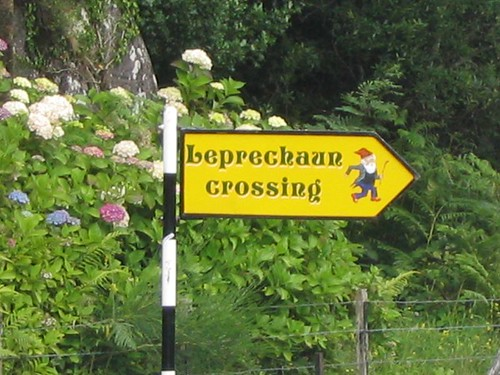 21 A Stop Sign - We stop for leprechauns