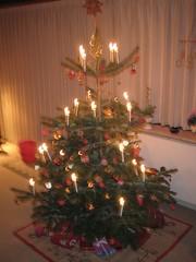 Christmas Tree 2004 (2)