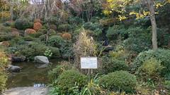 薬師の泉庭園