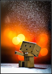 Danbo underneath an exploding bubble! photo by Chris J Bowley