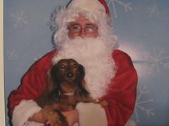 Lulu & Santa