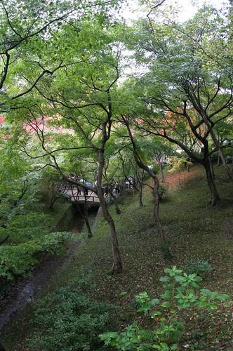 京都東福寺02