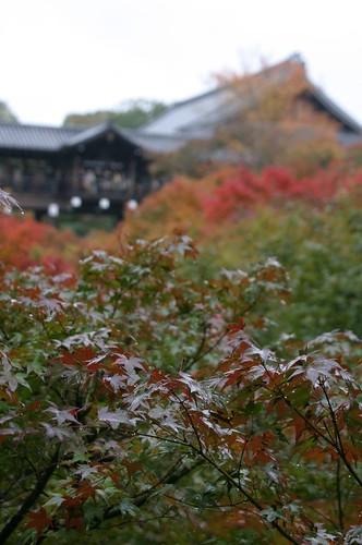 京都東福寺03