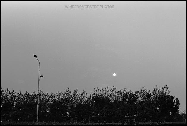 孤独的路灯 - wbwuxi - WANG BIN的个人主页