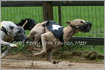 WH_Deutsches_Derby_Hamburg_2006