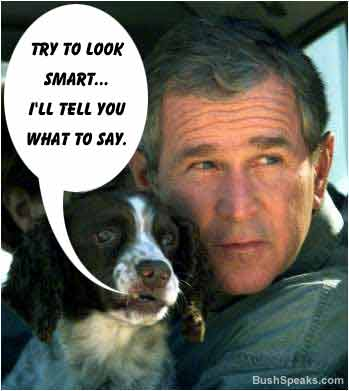 Erryji George W Bush Funny Quotes