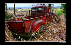 Old Red Chevy photo by Bonell Photography (dasbull)