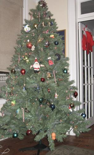 Tree 2006