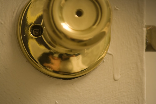 Distored Self-Reflection in the Bathroom Knob