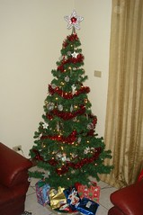 My Christmas Tree 2006