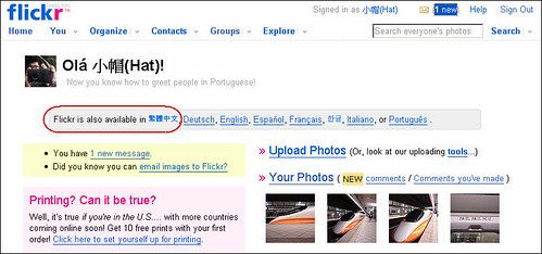 Flickr in Traditional Chinese (by 小帽(Hat))
