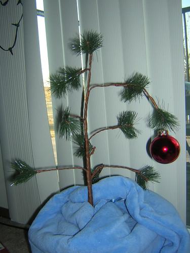 pathetic tree