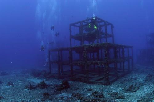 碩大的鋼鐵魚礁總共有三座
