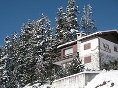 St. Moritz: Ein Ferienhaus am Waldrand