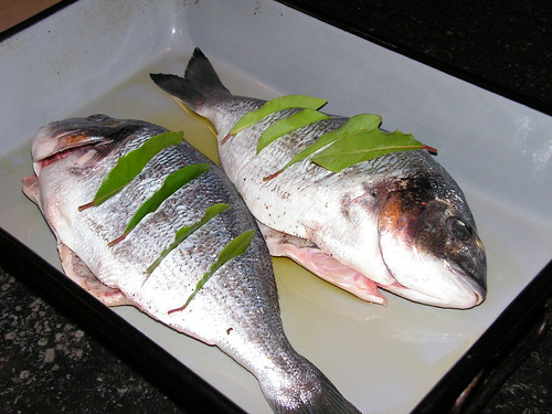 Deze foto is van het internet en komt niet helemaal overeen met mijn gemaakte vis.