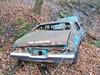 Abandoned blue Nova in the woods