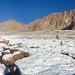Nevado de Chañi