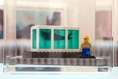 Lego Hirst photo by Paul Stevenson