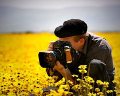 photog in the flowers photo by Sara Heinrichs (awfulsara)