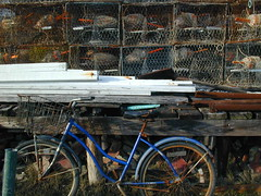 crab traps and bicycle