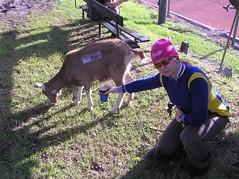Community Cup 2005 - Goat3