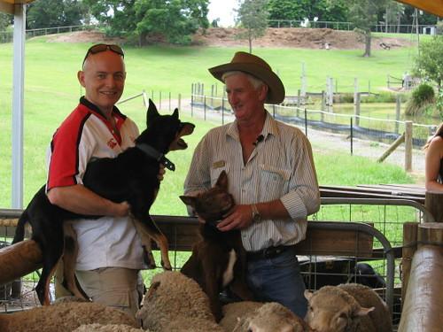 jonny_sheep_herder_1