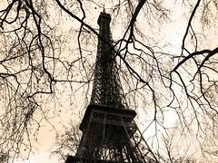 Torre Eiffel.- photo by ancama_99(toni)