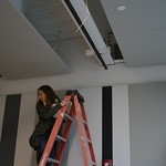 Carly Magill - Associate Director of Institutional Advancement, Writers Theatre's New Building's Ceremonial Beam-Signing.