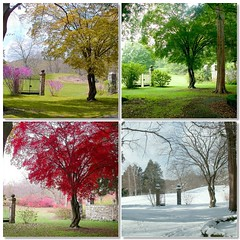 Four Seasons photo by Stanley Zimny