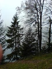 Bled 03