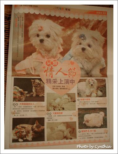 2006/07/30聯合報星報寵物版