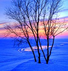 Seashore at dusk photo by Henri Bonell