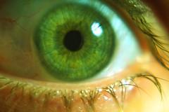 Green eye (by rutty)