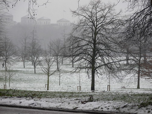 Snow falls in Hyde Park