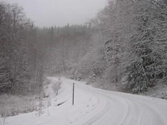Plenty of new snow this day