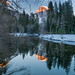 Reflective Moment - Yosemite National Park