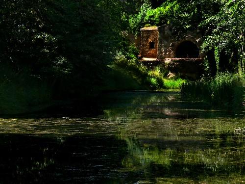 Grotto (by Walwyn)