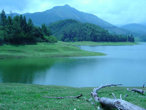 Munnar-Tea Garden of India