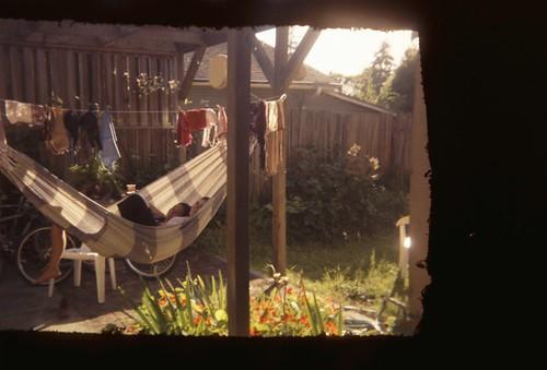the back yard.