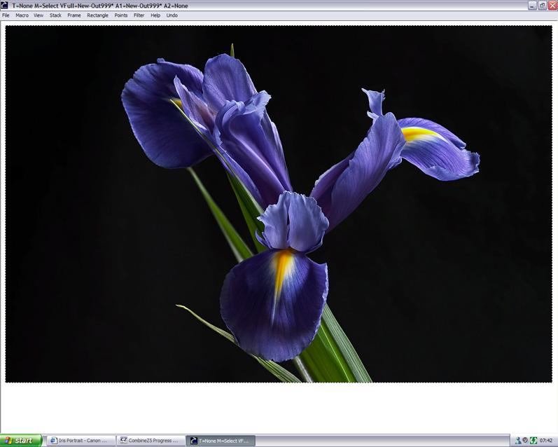 IMAGE: http://static.flickr.com/17/90116526_a28f654d3f_o.jpg