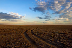 Two Track Prairie Vista photo by Fort Photo